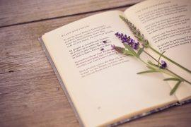 Nghị luận về sách