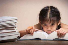 Nghị luận xã hội về tình trạng học lệch học tủ của học sinh hiện nay