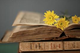 """Suy nghĩ về ý kiến: """"Một người là một pho sách, nếu ta biết đọc họ"""""""
