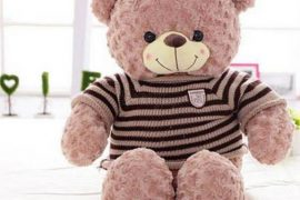 Tả con gấu bông mà em yêu thích